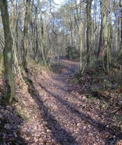 deep well worn road