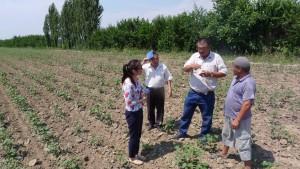 Israil, Myrzabamov Payzulla, Tumar, Orunbay