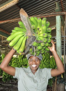 Big smile with banana bunch on head copy